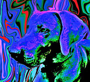 Puppies Mixed Media - Cj by Julie Hiskett