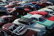 Tailgate Prints - Classic Cars Print by Robert Harmon