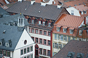 Residential Structure Prints - Clay Roof Tops In Heidelberg Print by Greg Dale