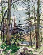 Forest Watercolor Art - Clear Lake by Donald Maier