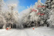Holiday Cards Photos - Clearing Skies Christmas Card by Lois Bryan