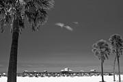 Adam Romanowicz - Clearwater Beach BW