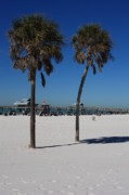 Clearwater Beach Framed Prints - Clearwater Beach Framed Print by Carol Groenen