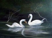 Swans... Paintings - Cleggan Swans by Cathal O malley