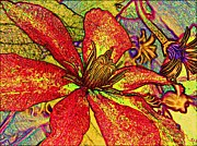 Pencil Drawing Photos - Clematis in Colored Pencil  by Chris Berry
