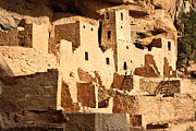 Ancient Ruins Prints - Cliff Palace Print by Adam Pender