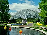 Photography - Climatron Dome by Julie  Grace