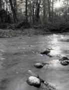 Bill Clinton Prints - Clinton River at Wolcott 1 Print by Bill Spengler