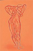 Female Figure Drawings Drawings Drawings - Cloresta by Chris Riley