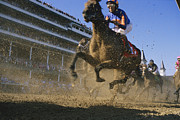 Helmet  Prints - Close Action Shot Of Horses Racing Print by Melissa Farlow