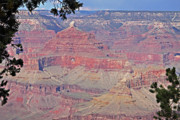 Seeing Art - Close In View Grand Canyon by Linda Phelps