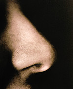 Nostril Framed Prints - Close-up Of A Human Nose In Side View Framed Print by Cristina Pedrazzini
