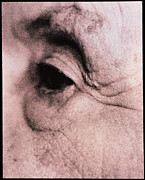 Elderly Woman Posters - Close-up Of An Elderly Womans Eye (side View) Poster by Cristina Pedrazzini