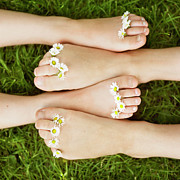Serene People Posters - Close Up Of Daisies On Childrens Toes Poster by Henrik Weis