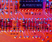 Printed Prints - Close-up Of Printed Circuit Board Print by Pasieka