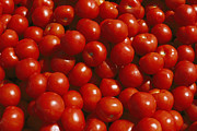 Helsinki Finland Prints - Close-up Of Tomatoes At A Market Print by Todd Gipstein