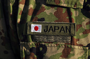 Camouflage Photos - Close-up View Of The Japanese Ground by Stocktrek Images