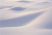 Snow Scenes Prints - Close View Of A Snowdrift Formation Print by Norbert Rosing
