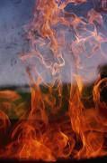 Close View Of Fire Print by Brian Gordon Green