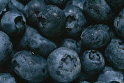Health Foods Framed Prints - Close View Of Fresh Blueberries Framed Print by Taylor S. Kennedy
