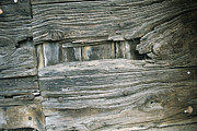 Etc. Photos - Close View Of Wood Barn Siding Nailed by Todd Gipstein