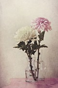 Flower Still Life Posters - Closely Poster by Priska Wettstein