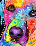 Dog Art Mixed Media Metal Prints - CloseUp Labrador Metal Print by Dean Russo