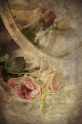Closeup Of Flowers In Mirror Reflection Print by Ethiriel  Photography