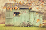 Autumn Landscape Art - Closeup of leaves with old barn in background by Sandra Cunningham