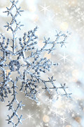 Snowy Night Photo Posters - Closeup of snowflake Poster by Sandra Cunningham