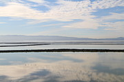 Regional Metal Prints - Cloud Reflections On Salt Marsh At Coyote Hills Regional Preserve California . 7D10968 Metal Print by Wingsdomain Art and Photography