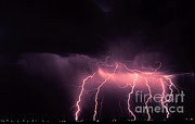 Cloud To Ground Framed Prints - Cloud-to-ground Lightning Framed Print by Science Source