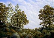 Oak Trees Paintings - Clouds In Foothills by Frank Wilson