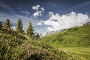 Graubunden Framed Prints - Clouds Over Grassy Rural Hillsides Framed Print by Manuel Sulzer