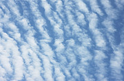 Cumulus Prints - Clouds Print by Richard Newstead