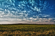 Field. Cloud Prints - Cloudscape Print by Stylianos Kleanthous