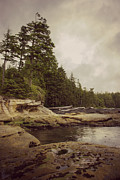 Port Renfrew Posters - Cloudy Daydreams - Botanical Beach B.C. Poster by Marilyn Wilson
