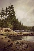 Marilyn Wilson - Cloudy Daydreams - Botanical Beach B.C.