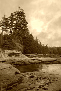 Port Renfrew Framed Prints - Cloudy Daydreams on Botanical Beach - sepia Framed Print by Marilyn Wilson