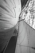 Sami Sarkis Photo Metal Prints - Cloudy sky seen through billowing white sails Metal Print by Sami Sarkis