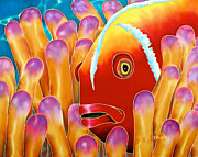 Tropical Art Tapestries - Textiles Prints - Clown Fish  Print by Daniel Jean-Baptiste