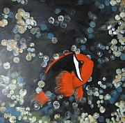 Clown Fish Originals - Clown Fish by Marcia Crispino