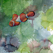 Clown Fish Drawings - Clown Fish by Tina McCurdy