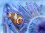 Ocean Creatures Posters - Clownfish And The Sea Anemone Poster by Arline Wagner