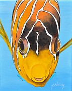 Jolaine Goldman - Clownfish head-on