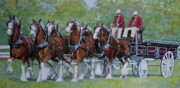 Portrait Painting Originals - Clydesdale Hitch by Anda Kett