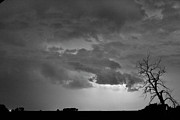 Timed Exposure Prints - CO Cloud to Cloud Lightning Thunderstorm 27 BW Print by James Bo Insogna