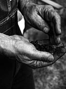 Coal Hands Print by Brian Mollenkopf