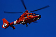 Helicopters Posters - Coast Guard Helicopter Poster by Stocktrek Images