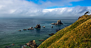 Seacape Metal Prints - Coastal Look Metal Print by Robert Bales